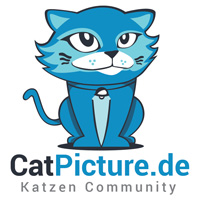 catpicture - Katzen Community