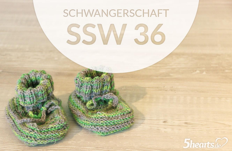 Schwangerschaftsupdate - SSW 36